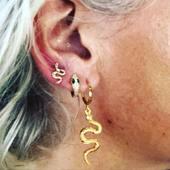 Paré🐍 #snake New !!! Bo à l'unité dispo à la boutique a partir de 20e #plaquéor 💪